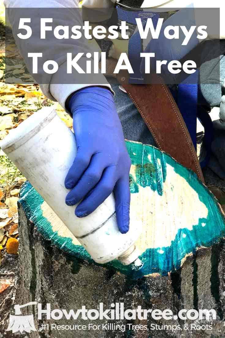 What Kills Trees Quickly, How To Kill a tree fast, Fastest way to kill a tree