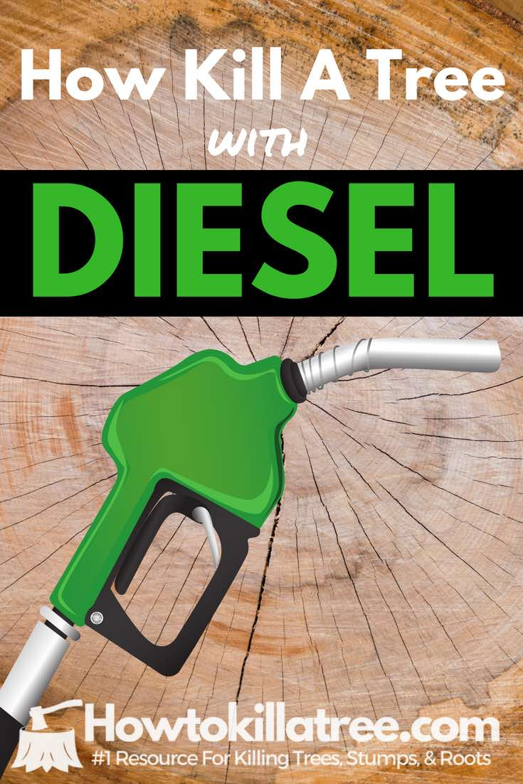 how to kill a tree with diesel, will diesel kill trees, burning tree stumps with diesel