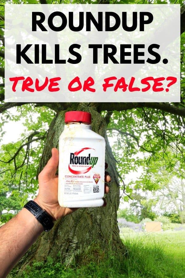 Will Roundup Kill A Tree Backyardables